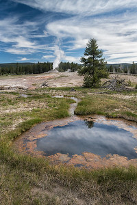 Castle Geyser from a distance.