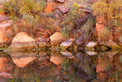 Phyllis was amazed at the impressionistic nature of these trees, stones and fall colors reflecting in a still pool along the Colorado River in Marble Canyon.  Third in a series