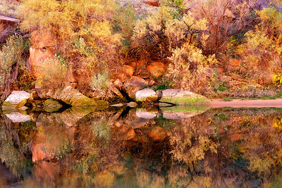 Phyllis was amazed at the impressionistic nature of these trees, stones and fall colors reflecting in a still pool along the Colorado River in Marble Canyon.  Second in a series.