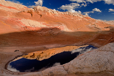 Stone and sky reflections in a temporary pool in the White Pocket, Vermilion Cliffs National Monument, Arizona