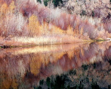 ref02: Phyllis captured these muted early winter colors reflecting in lower Bell Canyon lake in the Wasatch Mountains near Sandy, Utah.