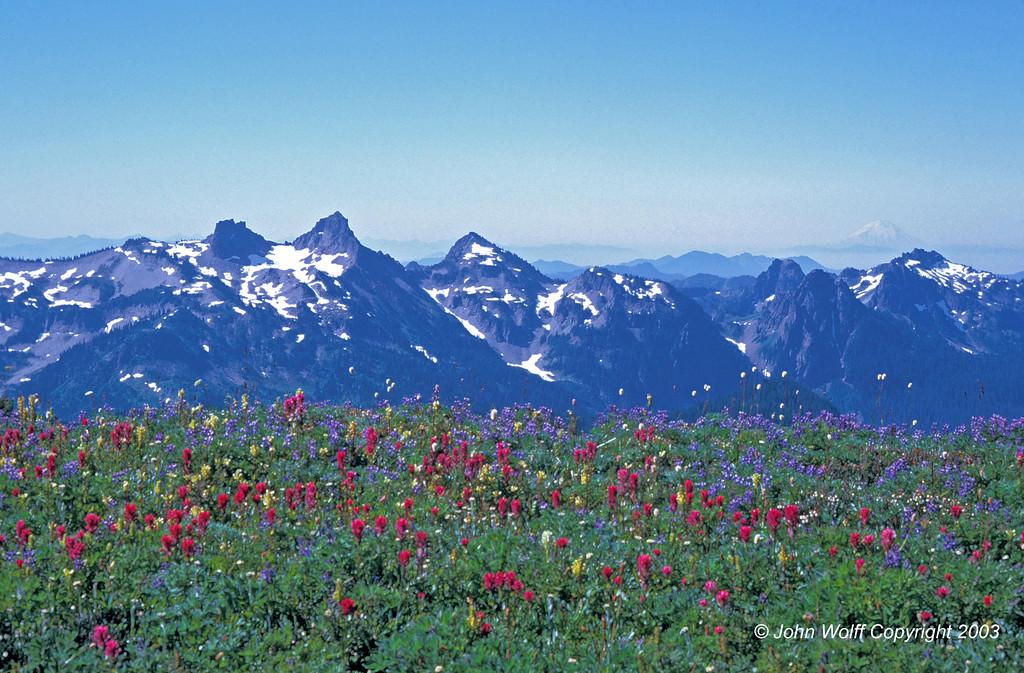 <b> Cascades and Wild Flowers on Mt Ranier </b>