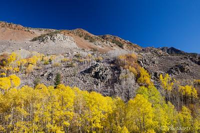 """""""Sierra Nevada Autumn"""""""