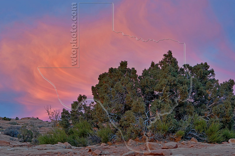Sunset Cirrus Clouds,<br /> Delicate Arch Trail,<br /> Arches National Park, Utah
