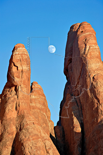 Sanstone Fins and Moon,<br /> Arches National Park, Utah
