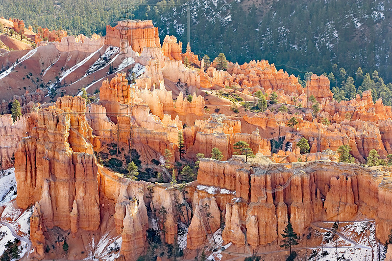Hoodoos Glow in Afternoon Reflected Sunlight,<br /> Bryce Canyon National Park, Utah