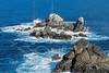 Point Lobos (Provia Slide Film),<br /> near Monterey, California