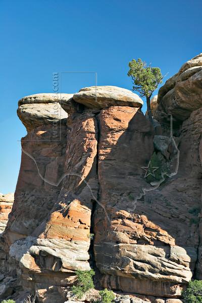Sandstone Peaks, Chesler Park Trail<br /> Canyonlands National Park, Utah