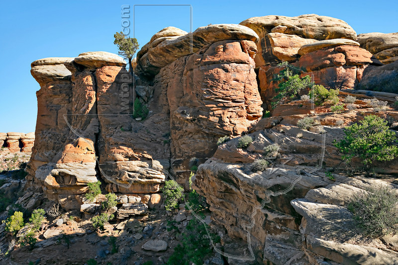 Sandstone Formations, Chesler Park Trail<br /> Canyonlands National Park, Utah