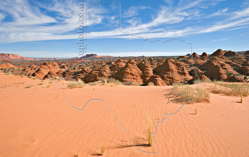 Sand Dunes on Trail to The Wave,<br /> North Coyote Buttes,<br /> Paria Canyon-Vermilion Cliffs Wilderness, Utah-Arizona