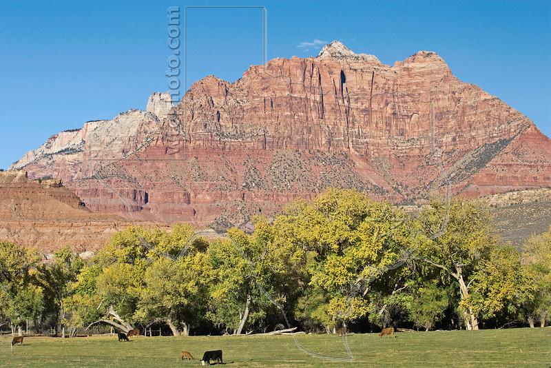 Scenery Along the Smithsonian Butte Scenic Backway,<br /> near Rockville, Utah