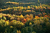 Sunset Fall Foliage,<br /> Near Provo, Utah