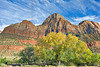 Bridge Mountain and Cottonwood,<br /> Zion National Park, Utah