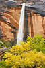 Waterfall and Fall Cottonwoods,<br /> Zion National Park, Utah