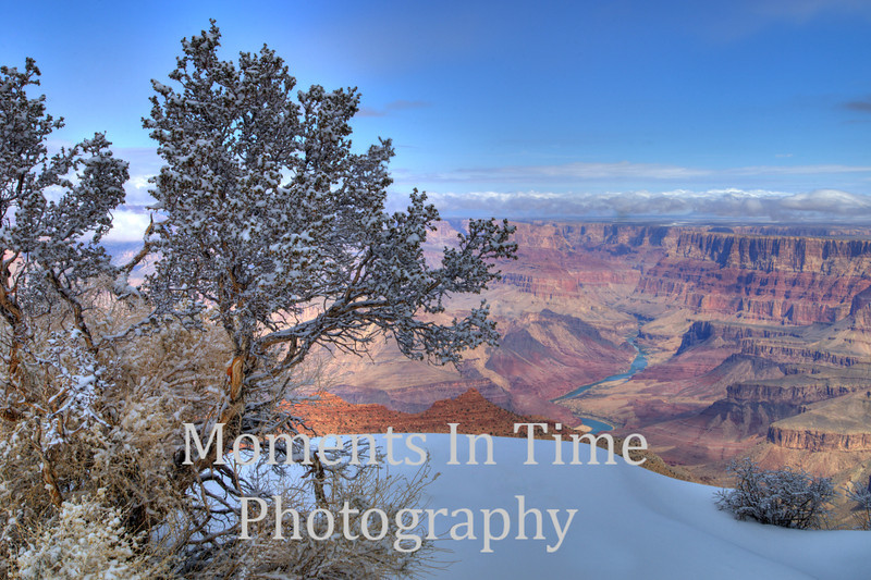 bush and snow on rim, river in distance