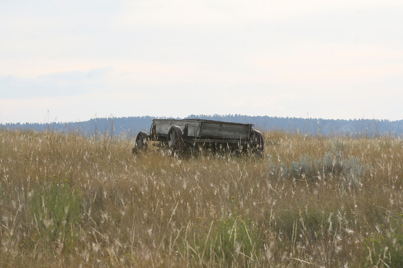 Old Wagon_SS2306
