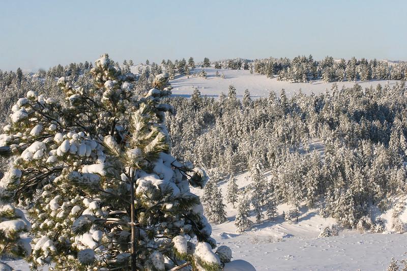 Snow on Montana mountain