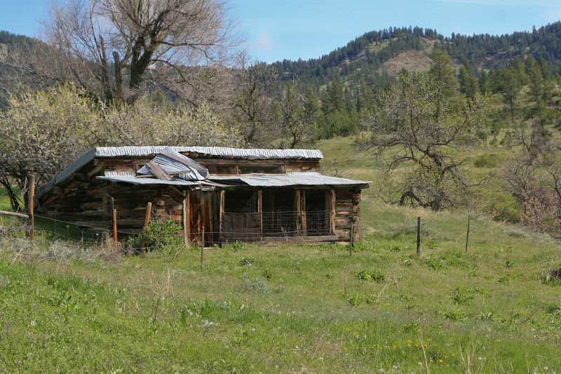 Log barn, or chicken coop left by eary settlers in the mountains of Montana