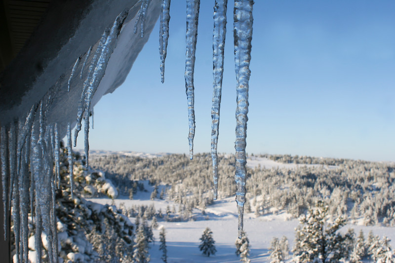 Long icicles hanging off a roof