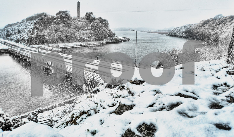 Ferrycarrig in the snow 2010