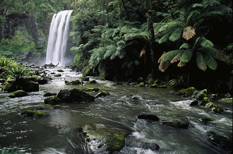 Hopetoun Falls, near Otway National Park, Victoria, Australia