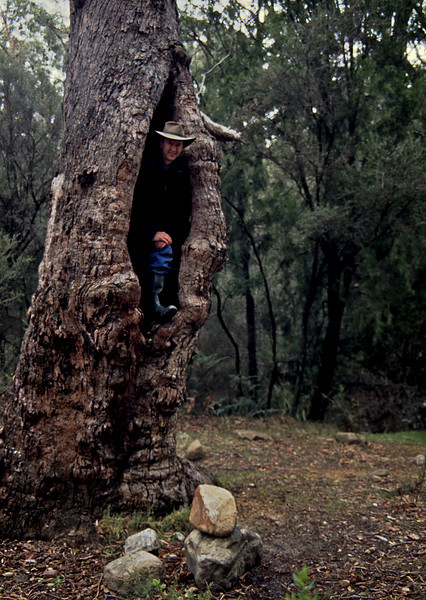 Me climbing out of a tree in Australia.  I didn't sleep in that tree, but for what it's worth, I did shave that morning in the side view mirror of a LandRover.