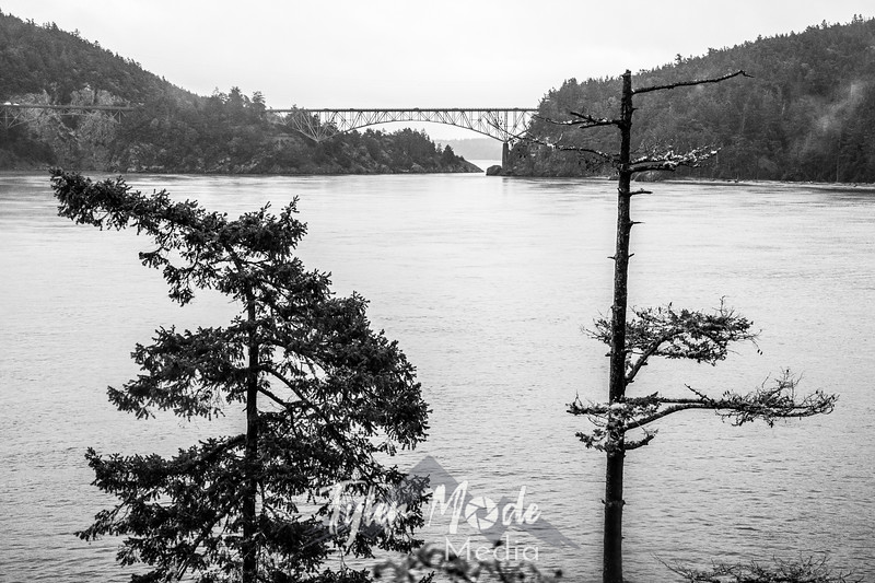 48  G Deception Pass Bridge BW