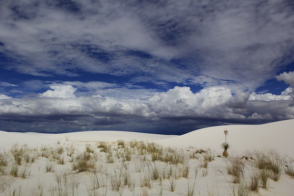 White Sands Nationl Monument New Mexico