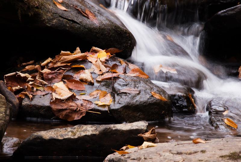 The Falls of Hills Creek, WV