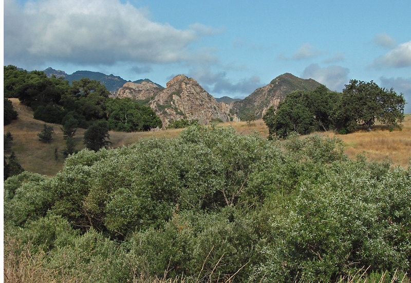 Malibu State Park - Landscape <br /> Auto ISO<br /> IS on<br /> Hand Held