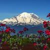 Mt Rainier at Crystal Mountain