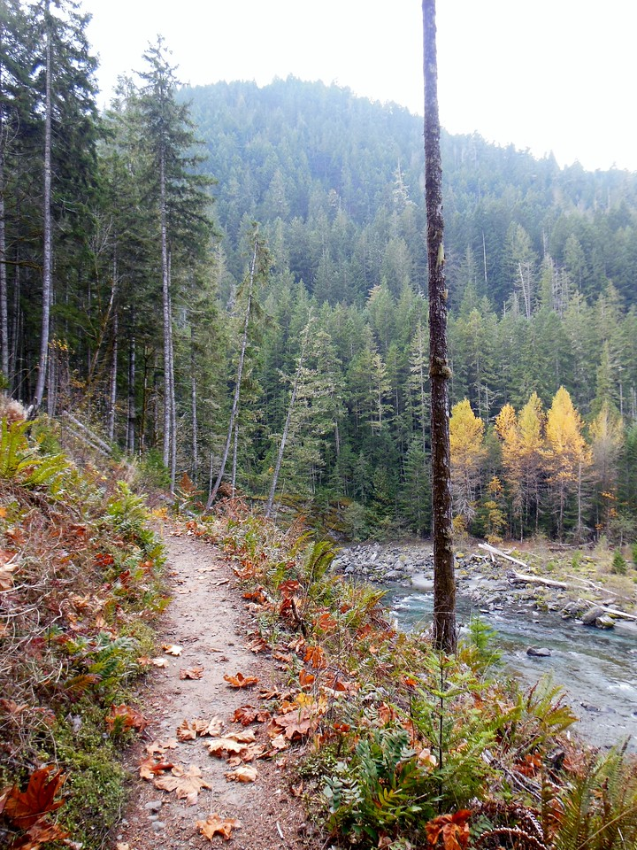 geyser valley hike trail