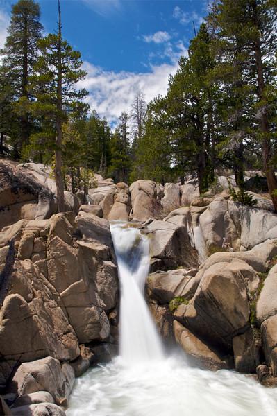Sardine Creek, Near Sonora Pass