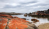 Bay of Fire, East Coast Tasmania