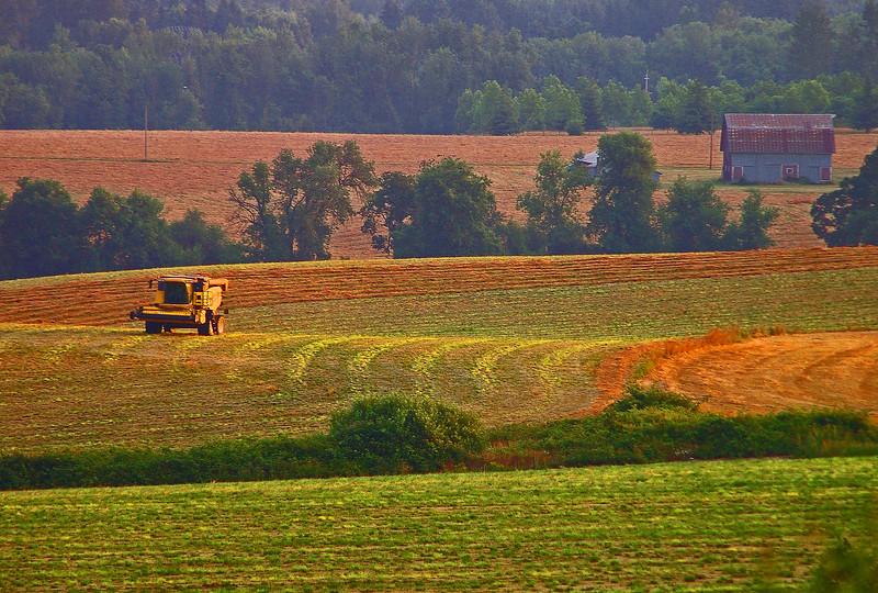 B0005279_edited-1.jpg  Fall Farming Light-3