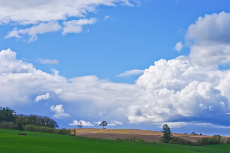 Spectacular skies.