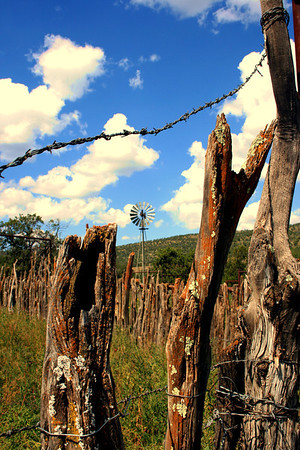 """""""Wired and weathered""""  Hondo valley, NM"""