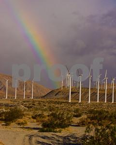 Palm_Springs_20081109_0497