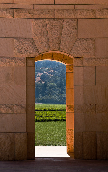 View to the Vineyards - Opus One - Napa Valley, CA