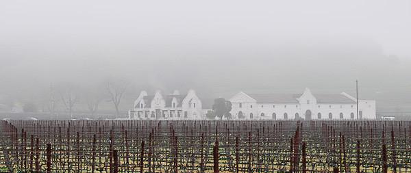 Napa Winery in Fog