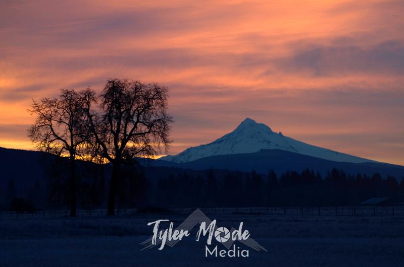 47  G Mt  Hood Sunrise