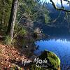 78  G BG Lake and Trail