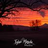 4  G Mt  Hood Sunrise Shadow and Tree