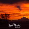 16  G Mt  Hood Sunrise Shadow