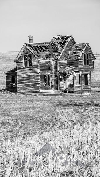 25  G Abandoned Home Field BW V
