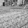 23  G Abandoned Home Field BW V