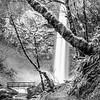 18  G Elowah Falls and Trail BW V