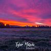 22  G Mt  Hood Sunrise Field