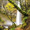15  G Elowah Falls and Trail V