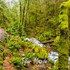 53  G Elowah Falls Creek and Trail